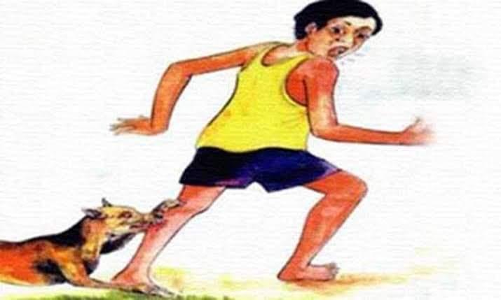 দিনাজপুরের কাহারোলে কয়েকটি কুকুরের কামড়ে মারা গেল তৃতীয় শ্রেনীর ছাত্র