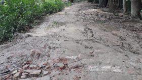 উন্নয়নের মহাসড়কেও শায়েস্তাবাদে পাকা হয়নি রাস্তাটি